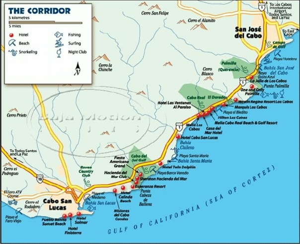 Dock Map | Cabo San Lucas sport, Cabo San Lucas sport ... Cabos San Lucas Map on